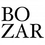 logo_bozar